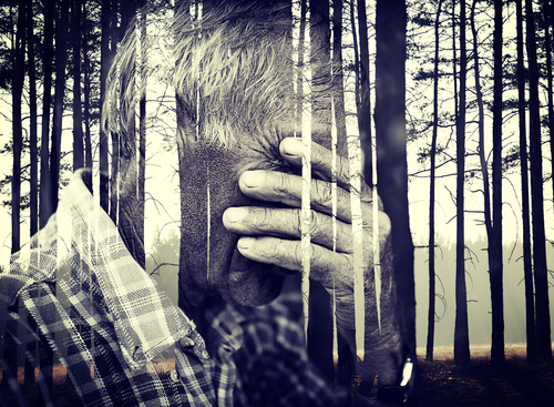 Mr. Grief:  my enemy, my friend
