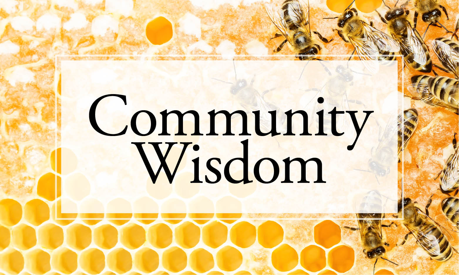 community wisdom for caregivers