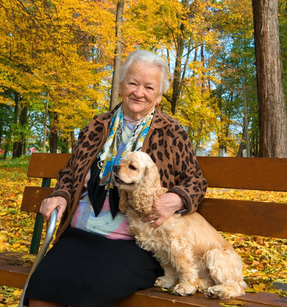 elderly woman with her dog in a park resting on a bench